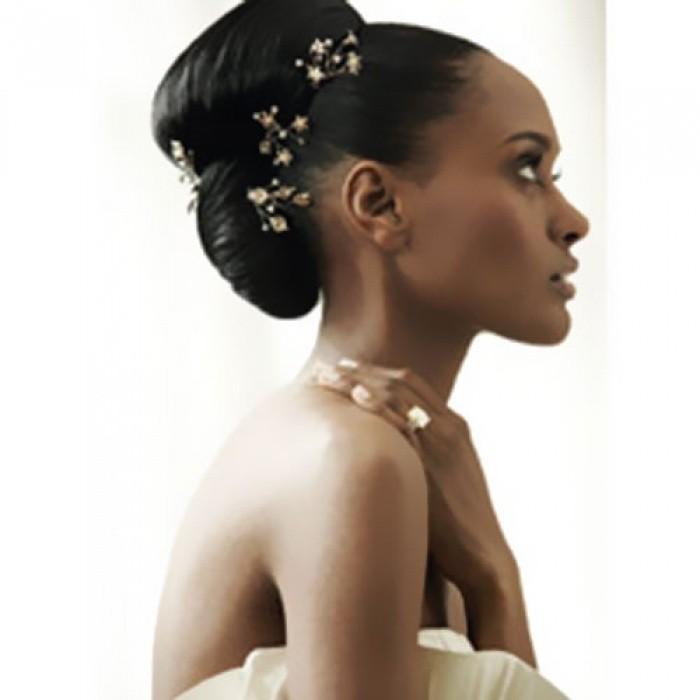 peinado para novias pelo lizo